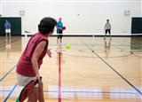 pickleball 23 (Custom)