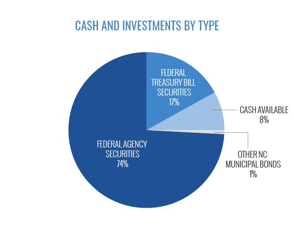Cash and Investments by Type