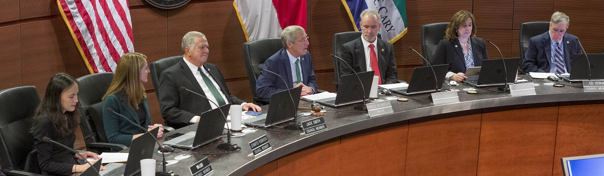 Mayor and Council at a council meeting in December 2019