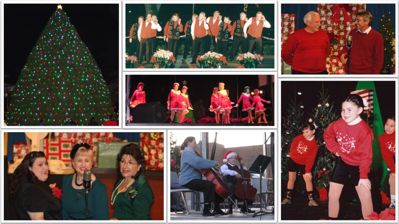 Christmas Tree Lighting Ceremony And Variety Show Town Of Cary