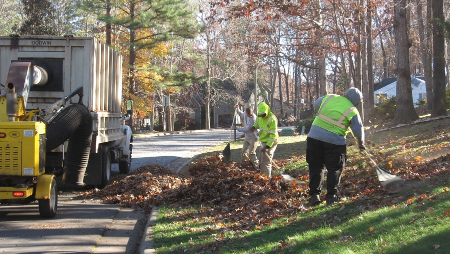 Public Works crew collecting leaves